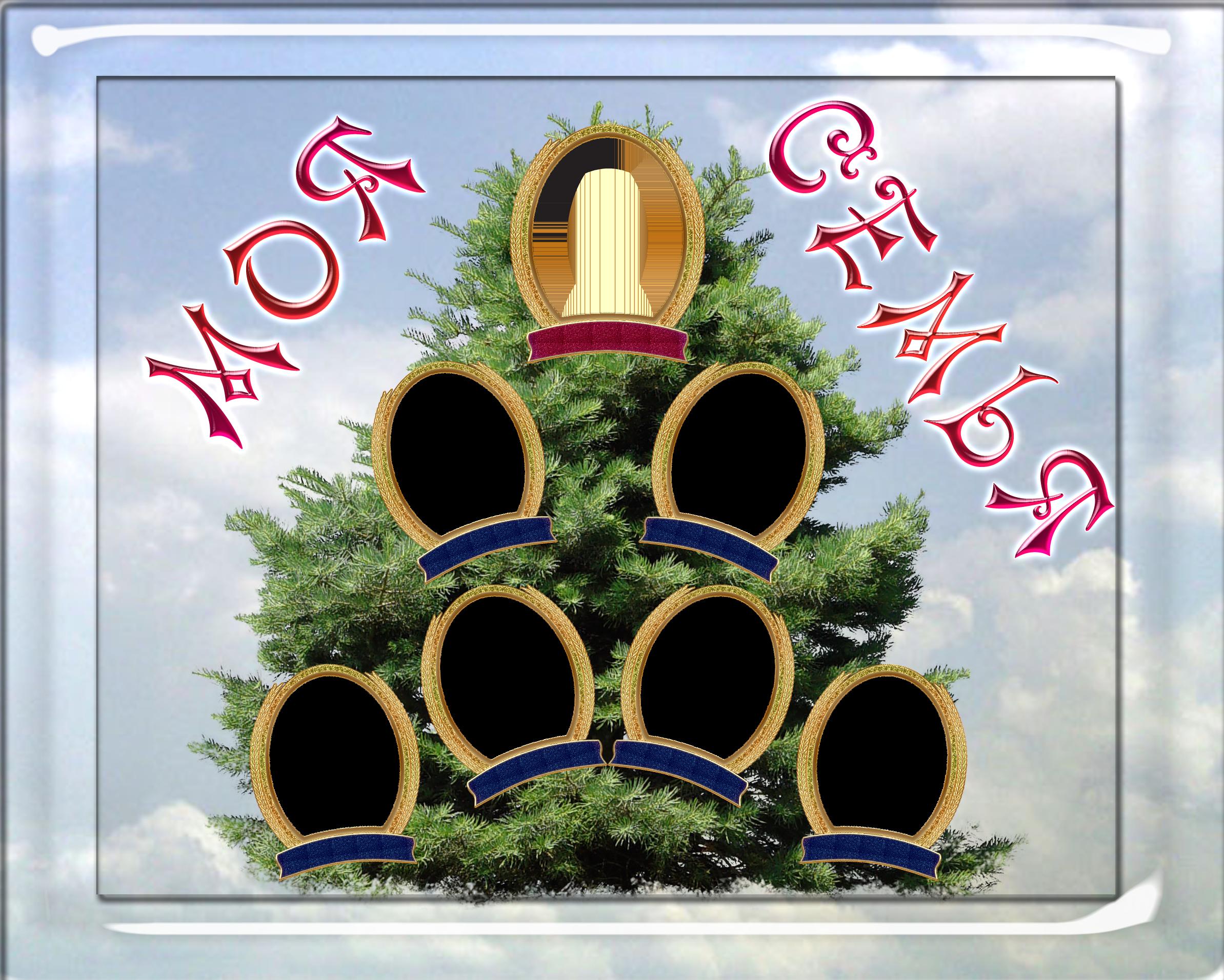 Как составить дерево родословной схема програмку